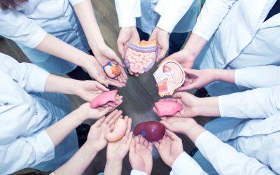 S2:EP17   Organ Transplants and Financial Strain